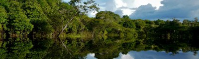 Brasilien - Regenwald am Amazonas River