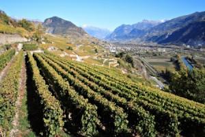 Wallis, Wallis-Valais, Schweiz