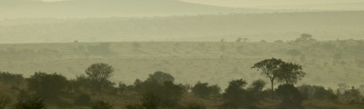 Osten - Blick über die Serengeti, Tansania