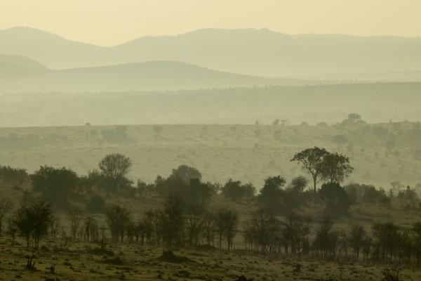 Blick über die Serengeti, Tansania