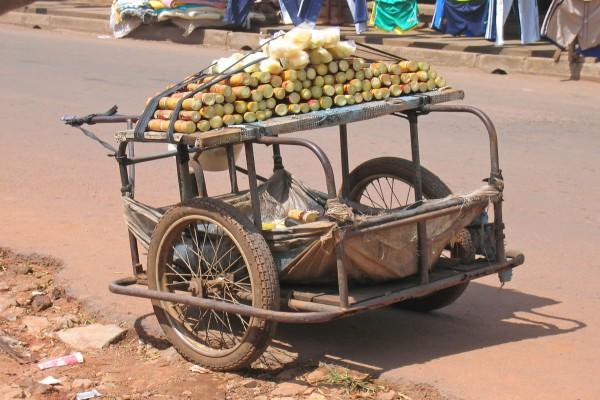 Karre mit Zuckerrohr, Kamerun