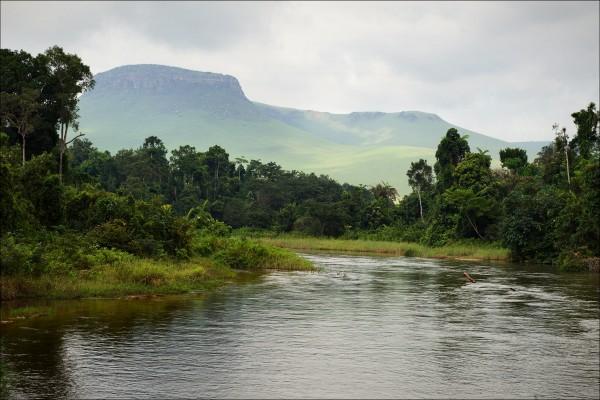 Kleiner Fluss im Jungle, Kongo