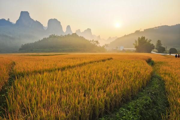 China - CountryCN