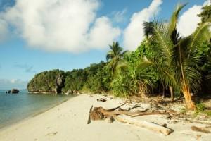 Papua Neuguinea, Papua-Neuguinea
