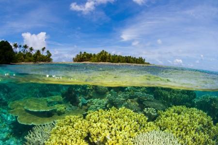 Korallenriff, Marshallinseln, Mikronesien