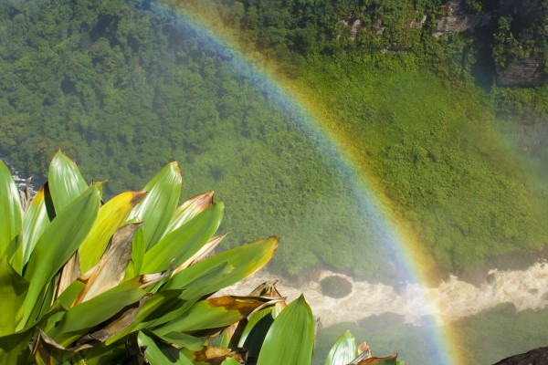 Kaieteur Falls in Guyana