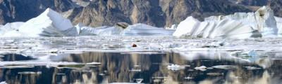 Arktis und Antarktis - Eisberge in Nordost Grönland