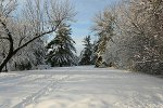 Winterlandschaft in Ontario, Kanada