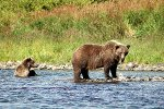 Alaska013