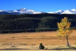 Moraine Park im Rocky Mountain Nationalpark