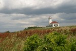 Faulkner Island Lighthouse, Stewart McKinney Wildlife Refuge