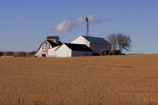 Farm in Iowa