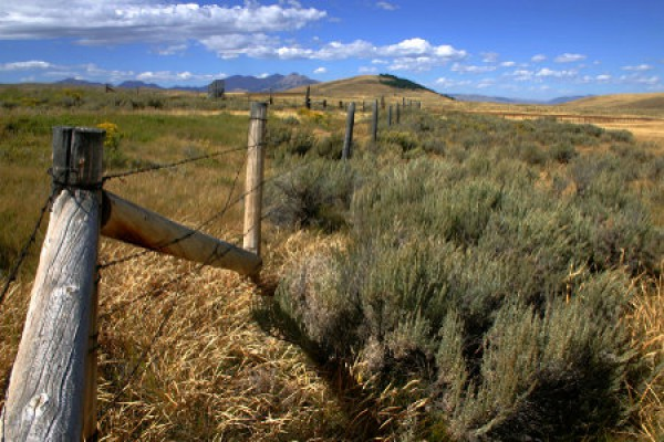 Wüstenlandschaft in Montana